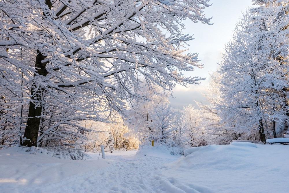 Piękna zima w polskich górach – Beskidy