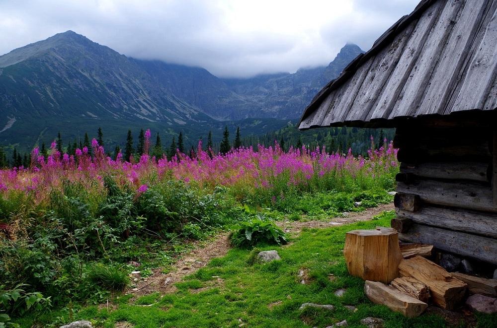 tatrzanski-park-narodowy-min
