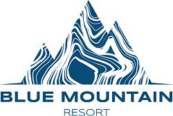 Logo_BMR_kolor_Blue