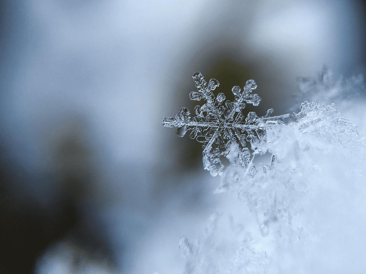 944803_Q89l_snowflake1245748_1280_C1200x1200-bKqPm1