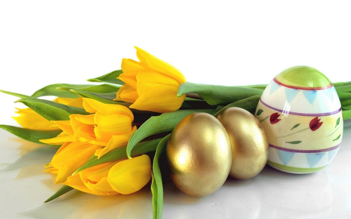 Easter-Background-Designs22
